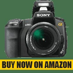 Best DSLR Camera under 300