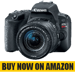 Cheap Video Camera for Filmmaking