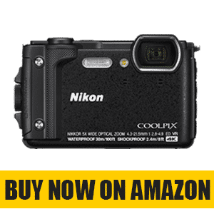 Best Budget Point and Shoot Camera for Traveling