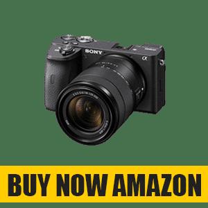 Best Mirrorless Camera with Sharpest AutoFocus